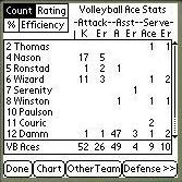 Volleyball ACE